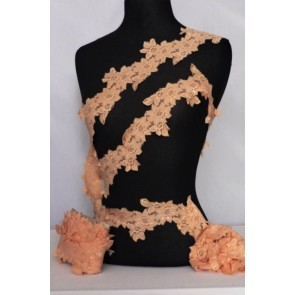Peach Flower Trail Lace Trimming SY59 PCH